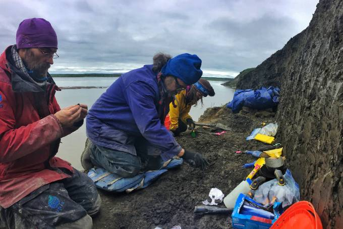 Pequenos fósseis encontrados no Alasca revelam presença de dinossauros no Ártico