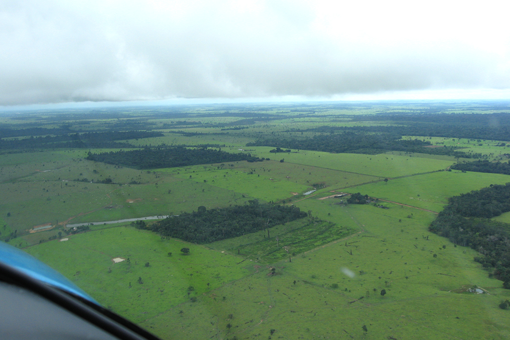 Vista aérea da Amazônia.