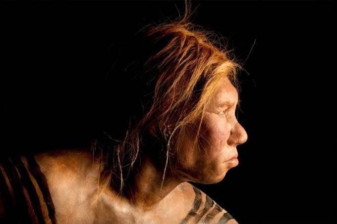 Neandertais também tinham diferentes tipos sanguíneos, sugere estudo