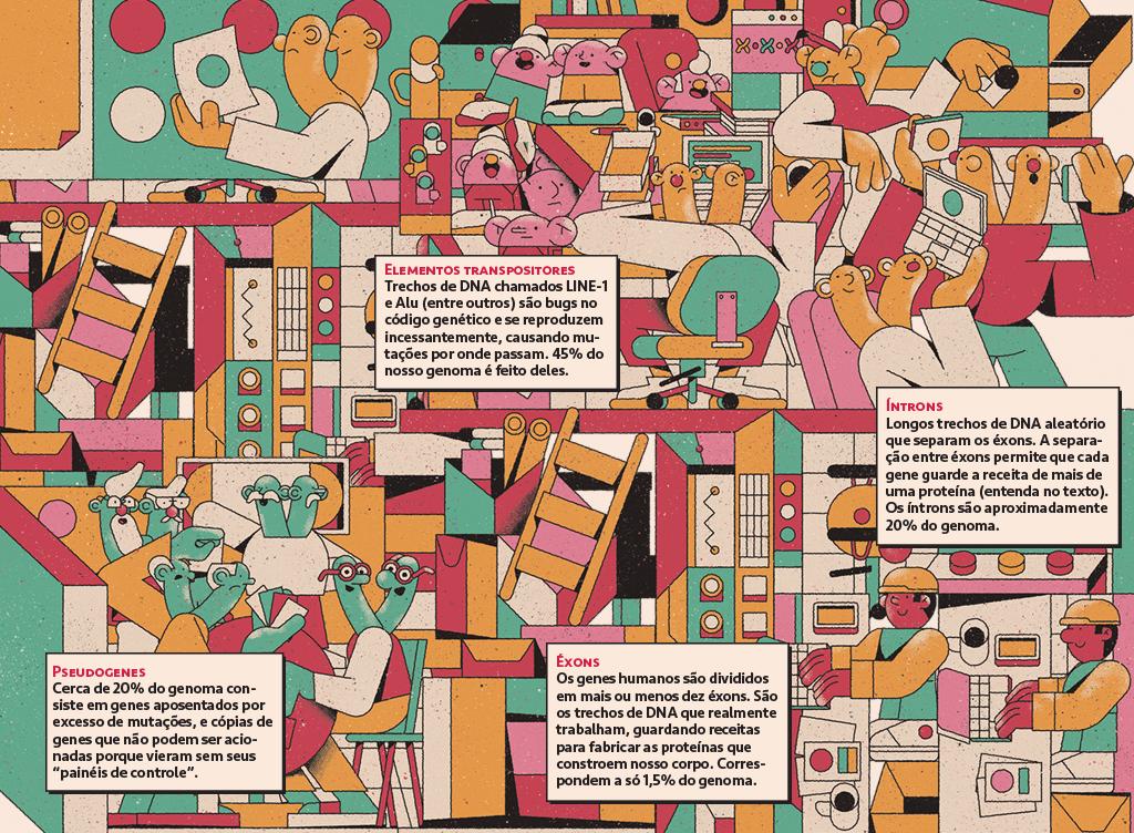 Ilustração da visão geral de uma empresa de genes, com genes saltadores, éxons, íntrons, depósitos e genes aposentados, com 4 caixas de texto falando um pouco sobre cada tipo de gene.