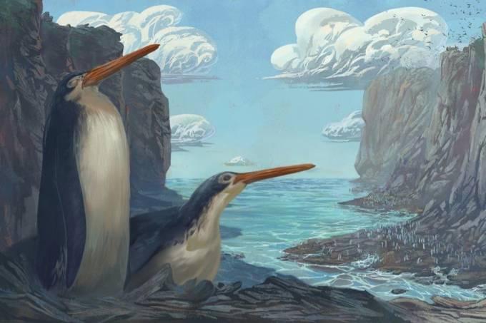 Crianças descobrem fóssil de pinguim gigante na Nova Zelândia