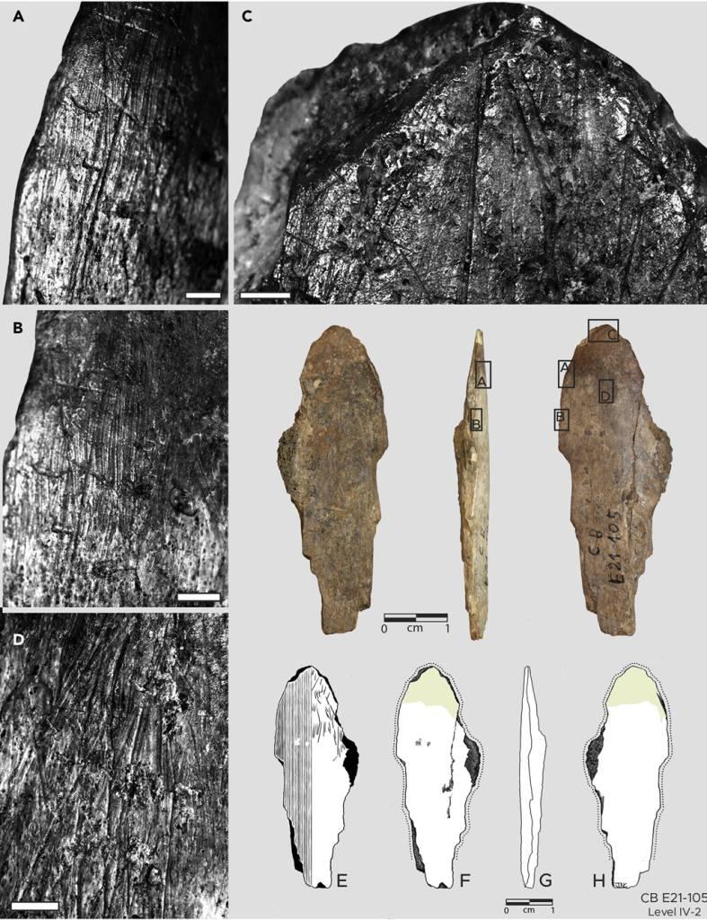 Fotografias e ilustrações da ferramenta espatulada de osso