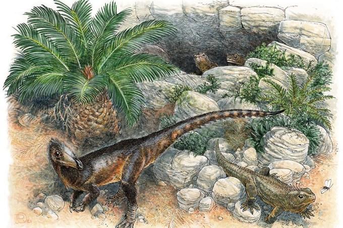 Cientistas descobrem dinossauro dragão do tamanho de uma galinha no Reino Unido