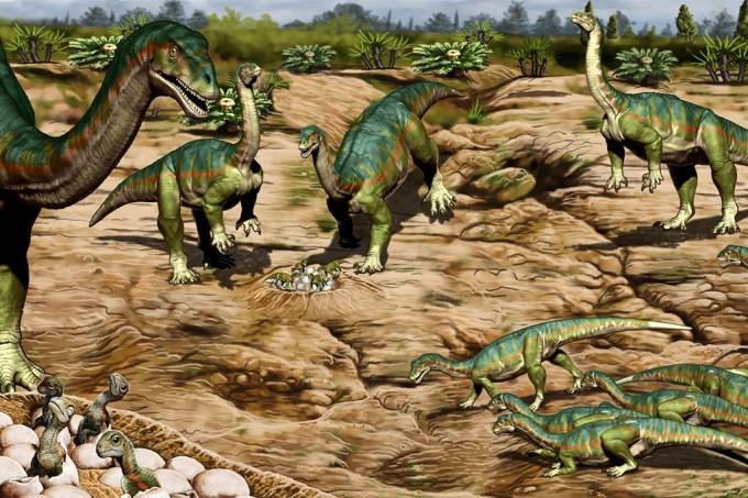 Descobertas primeiras evidências de dinossauros vivendo em bandos separados por idade